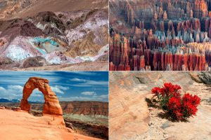 Artist Palette(Death valley), Bryce canyon, Delicate arch, Navajos paintbrush