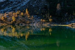 Ultime luci sui larici di lago Federa - Last light over larchs in Federa lake