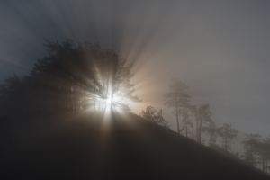 Raggi di luce tra la nebbia  /  Light rays trought the fog