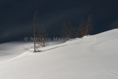Ombre e luci a passo Giau - Lights and shadows on the snow