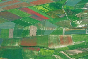 "Patchwork di campi dal Redentore - Fields patchwork from ""Redentore"" peak"