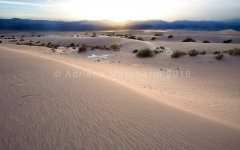 Stovepipe Dunes - Death Valley NP