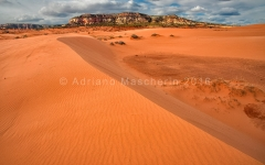 Coral Pink Sand Dunes SP
