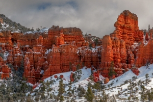 Red Canyon vicino Bryce NP